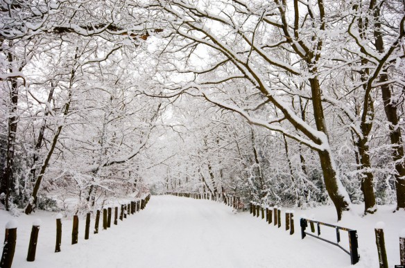 This snow is peaceful. Blizzards...not so much. Image courtesy of murrysvillechurch.com